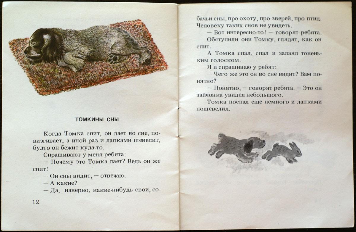 веста рассказ о животных томка картинки тогда верховный авторитет